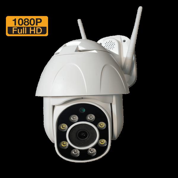 دوربین تحت شبکه mini speeddome